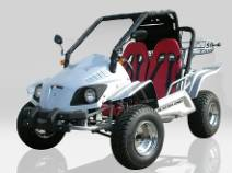 BUGGY 250cc HOMOLOGUE 2 PLACES