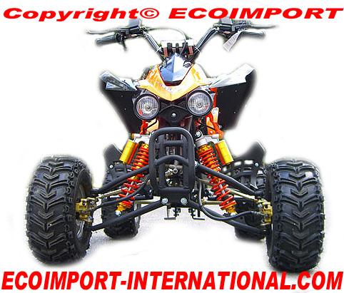 quad puma 110 prix