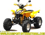 QUAD SHINERAY 300cc HOMOLOGUE