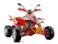 QUAD SHINERAY SPORT 250cc HOMOLOGUE